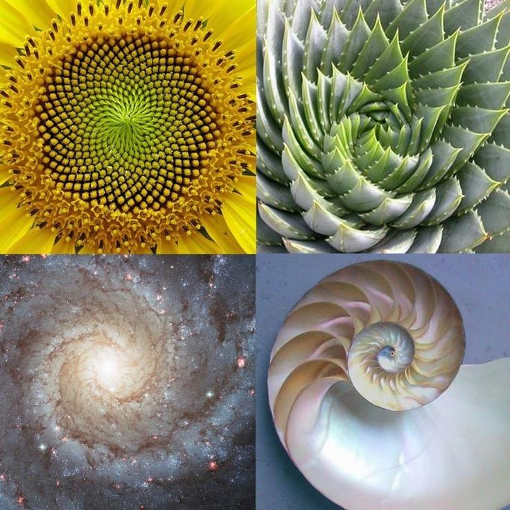 golden ratio sound