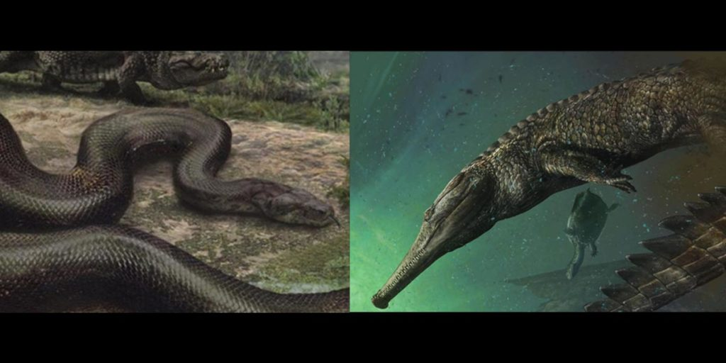 """TITANOBOA """"Greatest Discovery Since the T-Rex!"""" – Science Vibe"""